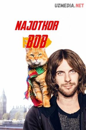 Najotkor bob / Bob ismli ko'cha mushuki / Bob mushugi Premyera Uzbek tilida O'zbekcha tarjima kino 2016 HD tas-ix skachat