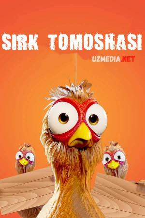 Sirk tomoshasi / Tovuq poygasi Premyera Multfilm Uzbek tilida tarjima 2020 Full HD O'zbek tilida tas-ix skachat