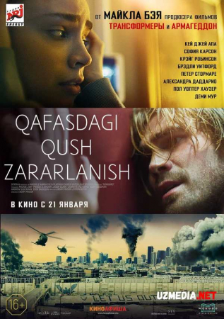 Qafasdagi qush: Zararlanish Premyera Uzbek tilida O'zbekcha tarjima kino 2020 Full HD tas-ix skachat