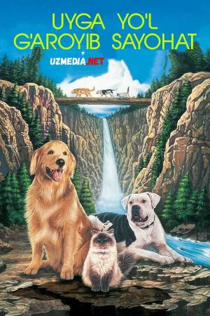 G'aroyib sayohat: Uyga yo'l Uzbek tilida O'zbekcha tarjima kino 1993 Full HD tas-ix skachat