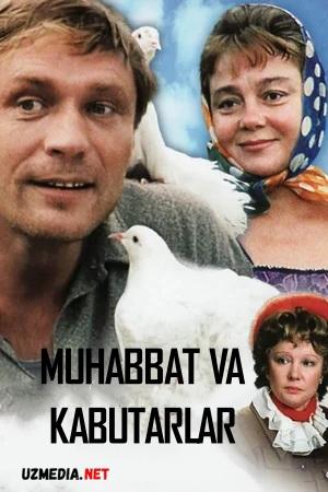 Muhabbat va kabutarlar Uzbek tilida O'zbekcha 1984 tarjima kino Full HD tas-ix skachat