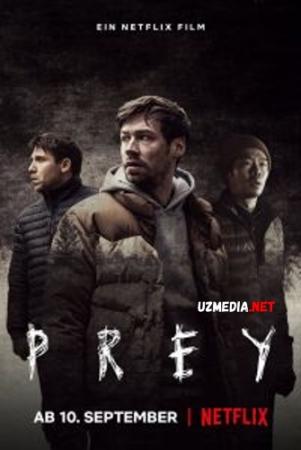 Ovchi va o'lja / Ovchi va yirtqich Uzbek tilida O'zbekcha tarjima kino 2021 Full HD tas-ix skachat